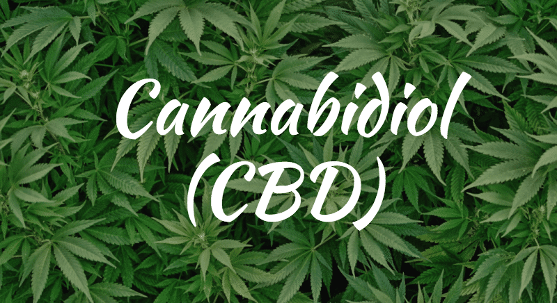 Cannabidiol Purchase Review