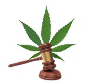 Cannabidiol Legal Status