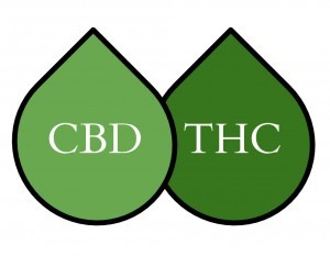 Image result for CBD is most effective without THC