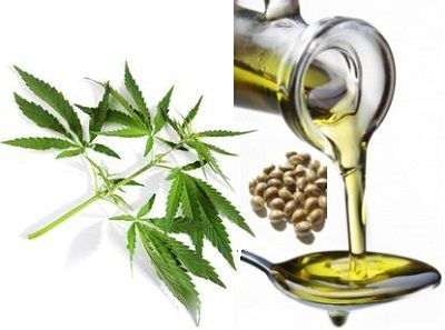 hemp-oil-uses