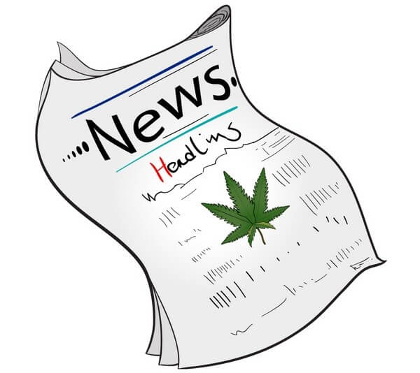 cannabidiol-news