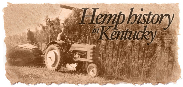 hemp-production-in-Kentucky