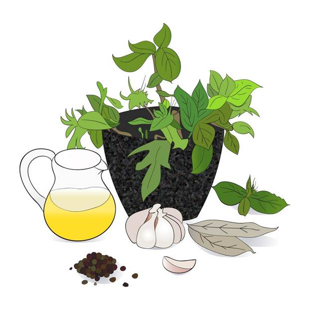 herbal-remedies-for-cancer