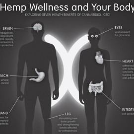 hemp-oil-benefits