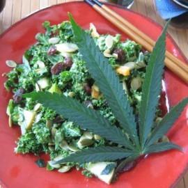 Cannabis Edibles - cannabis and kale salad