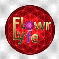 High CBD Strains - Flowr of Lyfe