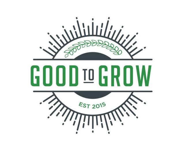 High CBD Strains - Good To Grow