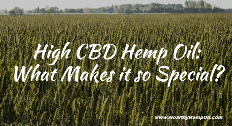 High CBD Hemp - Featured Image