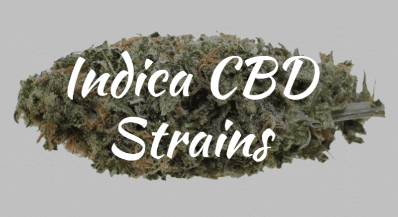 High CBD Strains - Indica Strains