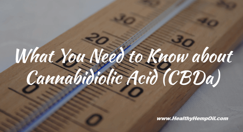 Cannabidiolic Acid - Featured Image