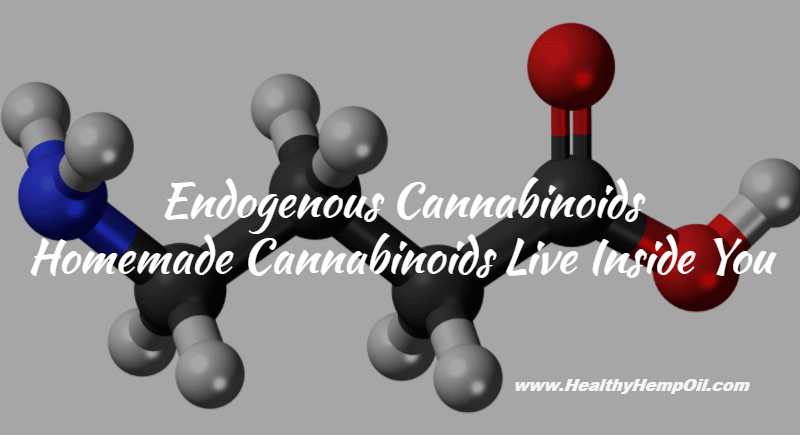 Endogenous Cannabinoids