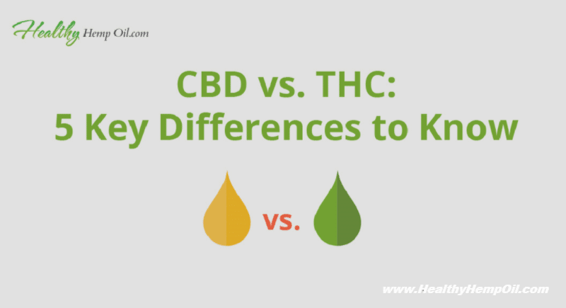 CBD vs THC - Healthy Hemp Oil.com - Featured Image