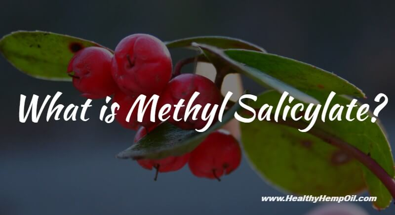 What Is Methyl Salicylate