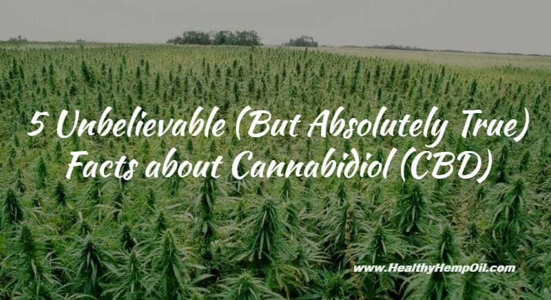 5 Unbelievable Facts about Cannabidiol (CBD)