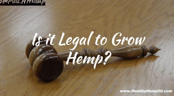 is-it-legal-to-grow-hemp