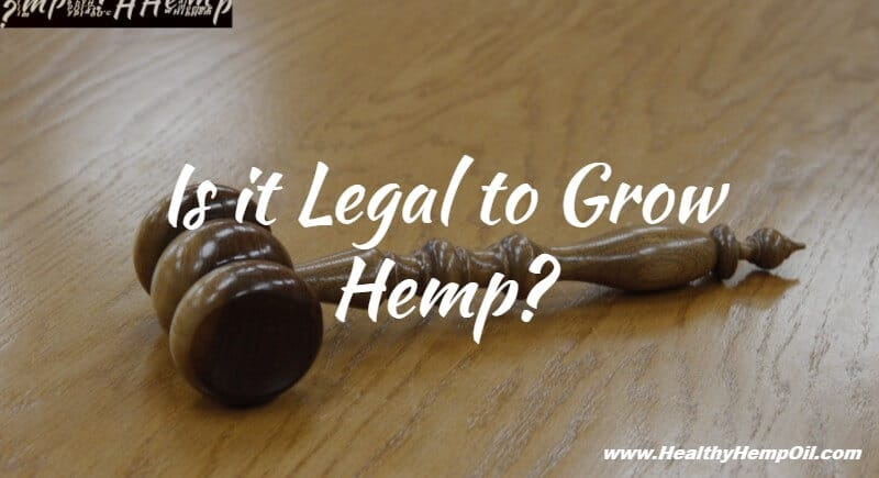 is-it-legal-to-grow-hemp