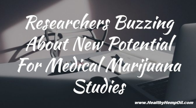researchers-buzzing-about-new-potential-for-medical-marijuana-studies
