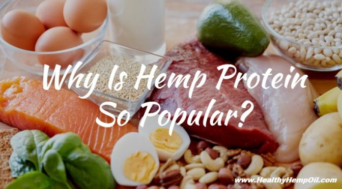 why-is-hemp-protein-so-popular