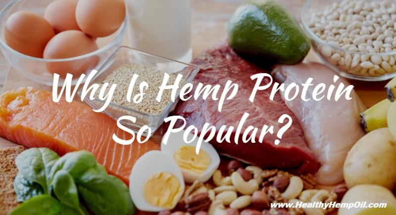 why-is-hemp-protein-so-popular