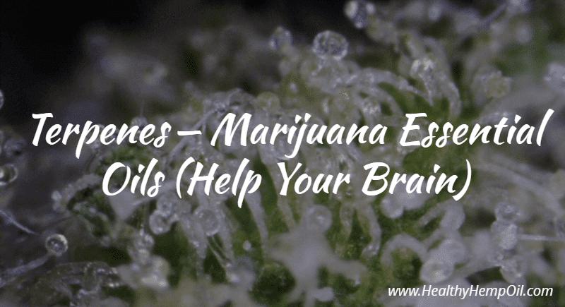 Terpenes - Marijuana Essential Oils (Help Your Brain)
