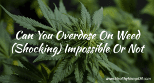 Can You Overdose on Weed