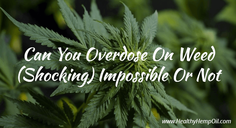 how to know if you overdosed on weed