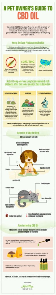 A Pet Owner's Guide to CBD Oil Infographic | Healthy Hemp Oil