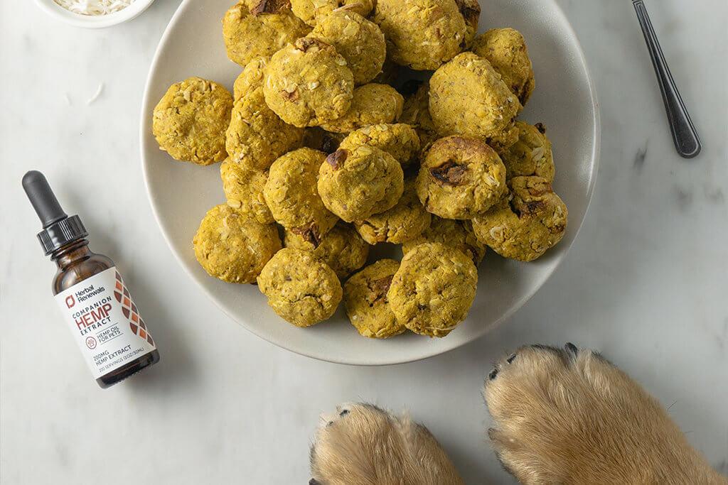 CBD dog treat recipes