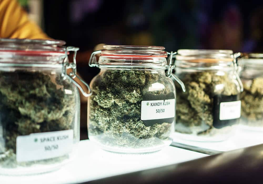 Jars of marijuana in cannabis dispensary